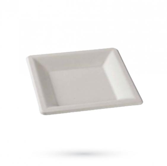 R8 - Lot de 10 assiettes pulpe de canne (25,5x25,5 cm)
